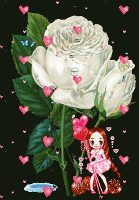 imagenes-de-rosas-blancas-con-movimiento-para-descargar