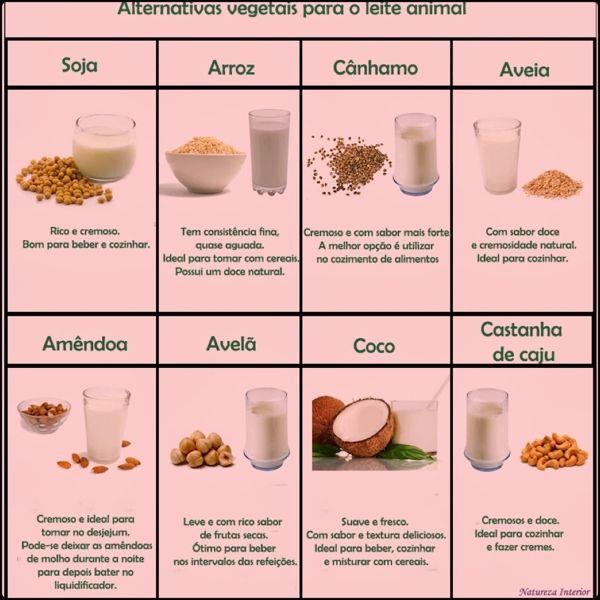 tipos de leites vegetais - Pesquisa Google