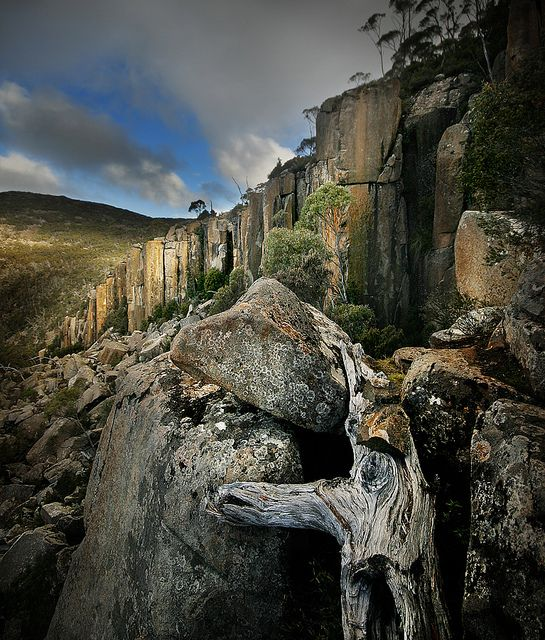 On the Lost World Trail on Mount Wellington, Hobart, Tasmania, Australia by Andrew C Wallace