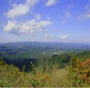 「高鈴山」標高623m