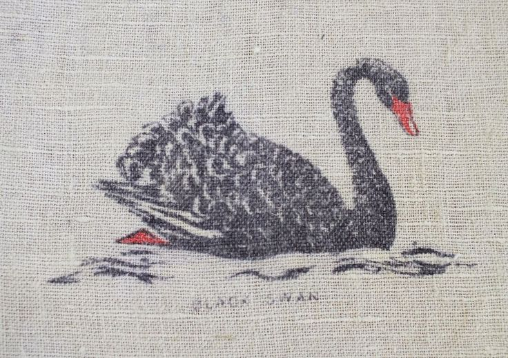 Hide your biscuits with this black swan around!