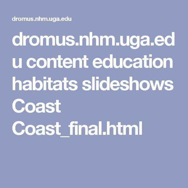 dromus.nhm.uga.edu content education habitats slideshows Coast Coast_final.html