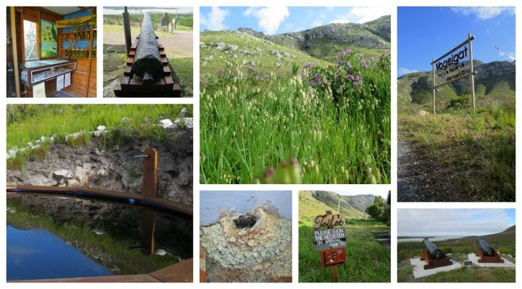 Vogelgat Nature Reserve Address: Hermanus Tel: 028 314 1411 or 082 864 5297 Email: vogelgatreserve@telkomsa.net  Vowww.vogelgat.co.za