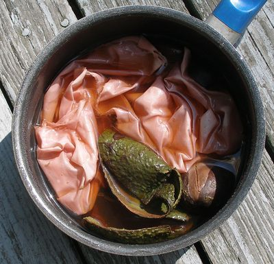 Avocado ~ Boil the skins and pit and soak cloth overnight ~ turns white fabric pink.