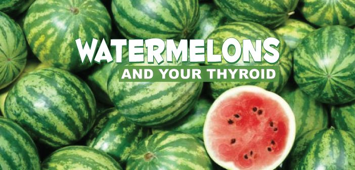 Make watermelon a part of your daily diet & you will see amazing benefits: Improving cardiovascular health and providing thyroid support!  Eat watermelon and know that it supports your thyroid???  Ƹ̵̡Ӝ̵̨̄Ʒ  Learn more about how it revs up your immune system, here  ▼  http://thyroidnation.com/9-benefits-watermelon-health-thyroid/  #Zinc #Watermelon #Thyroid