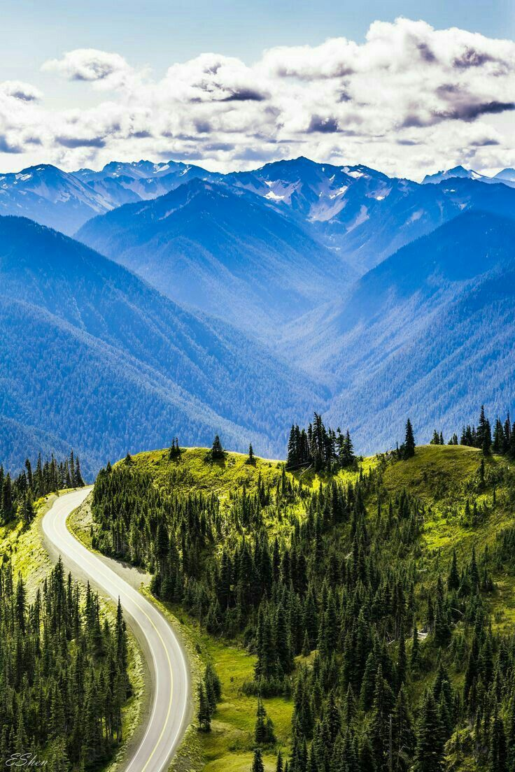 Hurricane Ridge is a mountainous area in Washington's Olympic National Park.