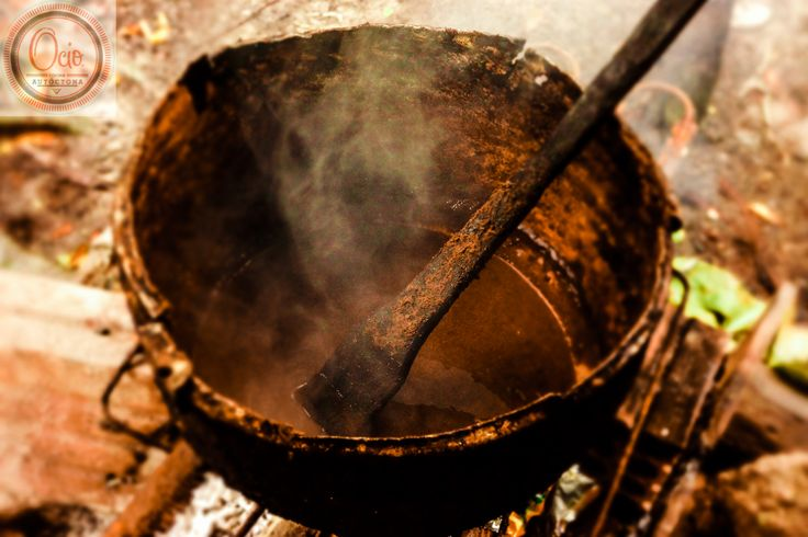 Tucupí, caldo fermentado de la yuca brava