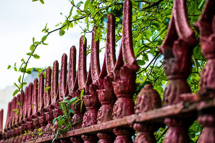 """""""St. Mary's Red Iron"""".  Surrounding the old St. Mary's Church of Ireland in Southern Ireland is this amazing old, rusty gate that has stood the test of time! I like the way it looks and the aesthetic.  The church was built in 1870. #travel #Europe #wanderlust #photography #red #Ireland #fence #church"""