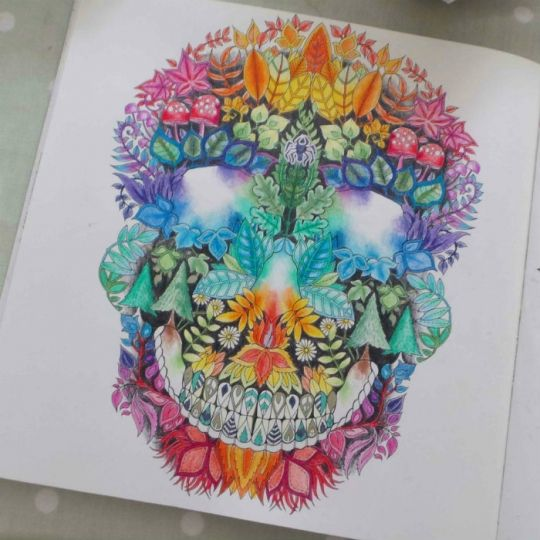Johanna Basford Picture By Rosie Saunders Colouring Gallery