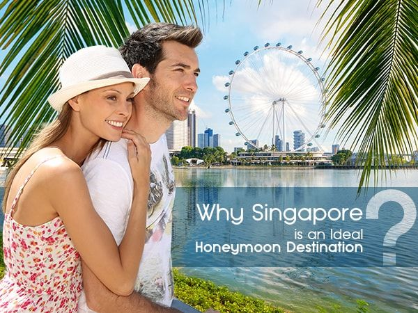 Here is some romantic things that makes Singapore an ideal honeymoon destination. Singapore has lots of romantic escape for making memorable trip. https://goo.gl/B3c1rs #SingaporeHoneymoon #HoneymooninSingapore #GalaxyTourism