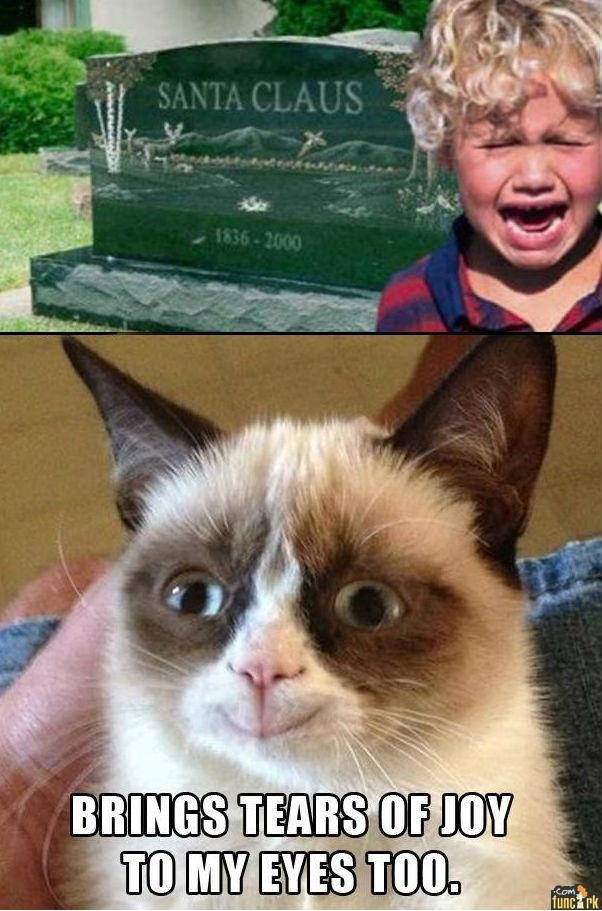 PICTURE Santa Claus is Dead Funny grumpy cat memes
