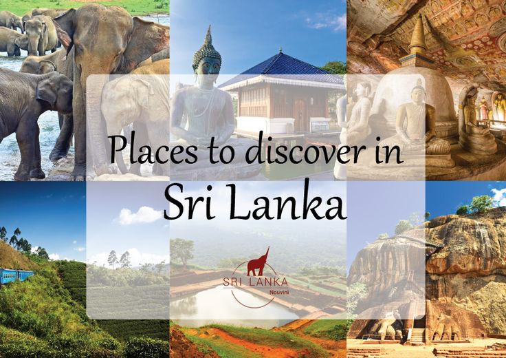 Find out the best things to do, places to go and visit in Sri Lanka!