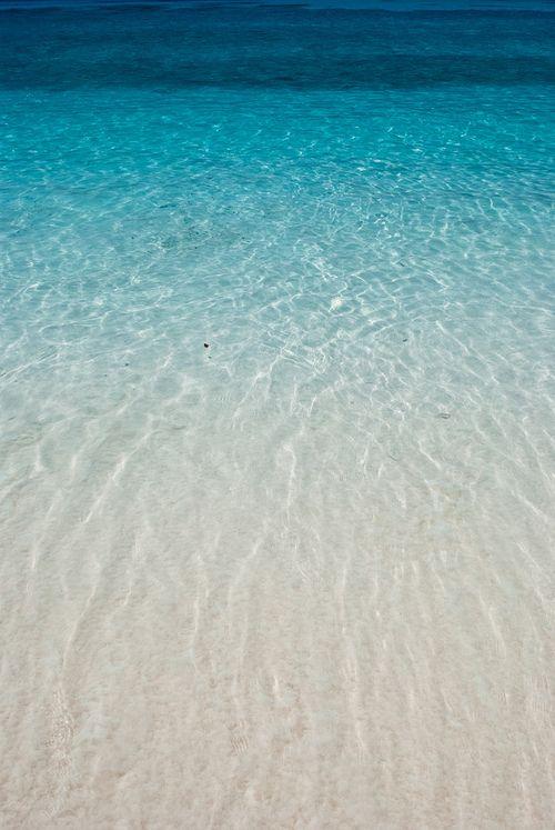 the. beach.