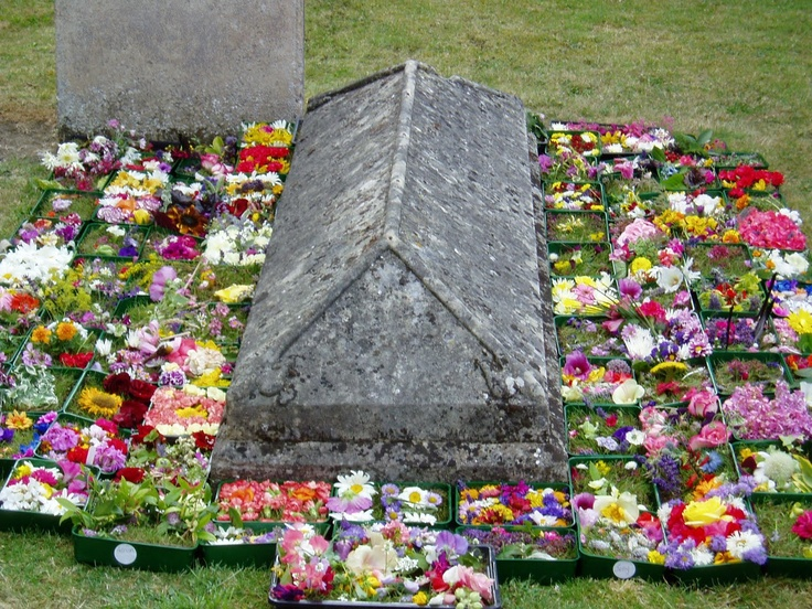 Midsummer cushions around the grave of poet John Clare