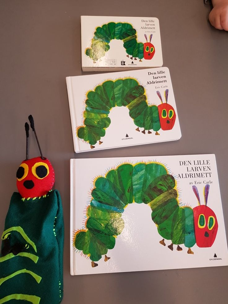 Hånddukke og ulike formater av boka om Den lille larven Aldrimett