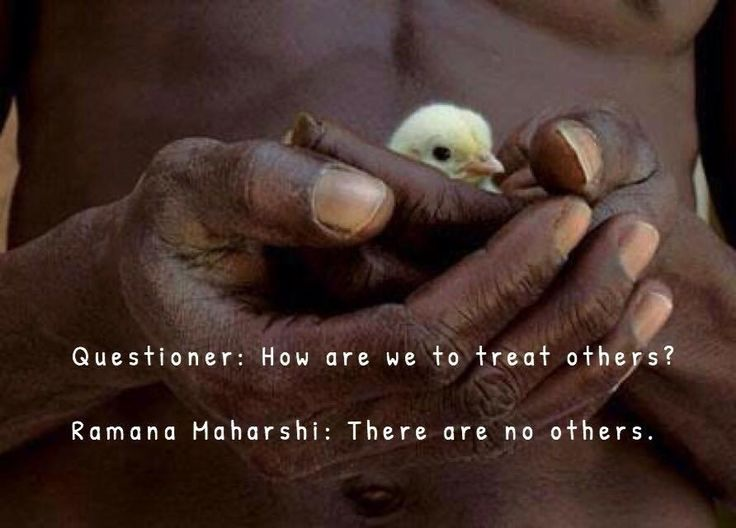 Questioner: How are we to treat others? Ramana Maharshi: There are no others.