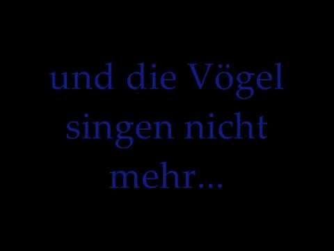 Genius Translations – Rammstein - Bück dich (English ...