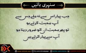 urdu saying and quotes - Google Search