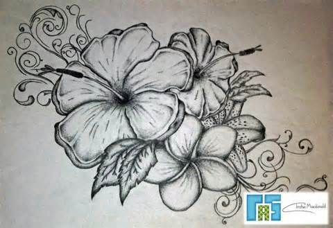 Flower tattoo designs yahoo image search results tats for Hibiscus flower tattoo sketches