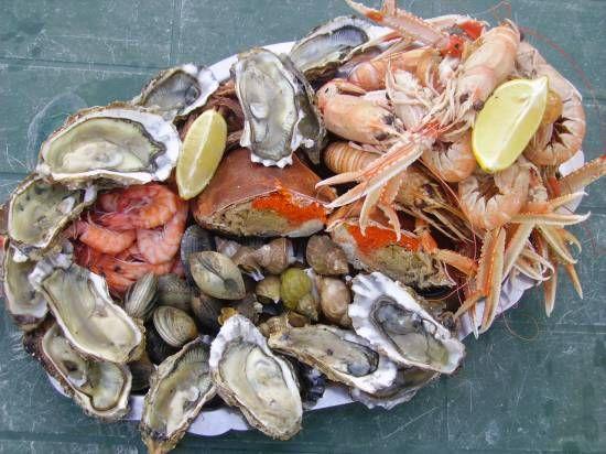 Schaal- en schelpdieren; kaviaar uit de zee | Smultalk