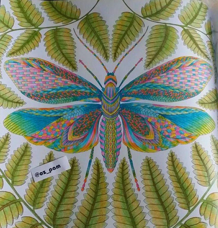 Inspirational Coloring Pages By Oz Pam Inspiracao Coloringbooks Livrosdecolorir Jardimsecreto Secretgarden