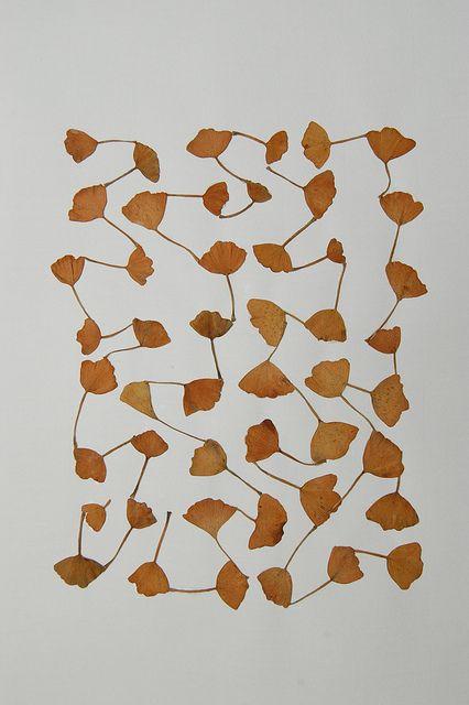 Graphic Pattern - Connected - Marian Bijlenga ... follow us @ www.pinterest.com/signbrand