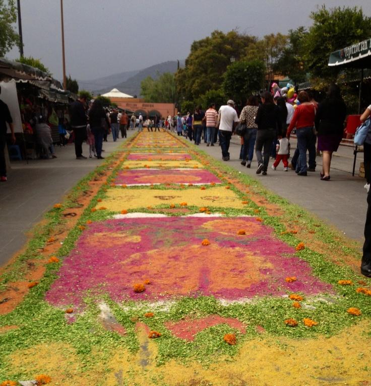 Tapete de aserrín en Tepozotlan pueblo mágico de México ! Día de muertos
