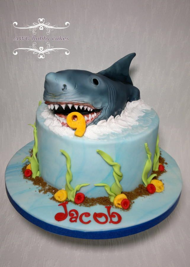 Shark Themed Cake Ideas