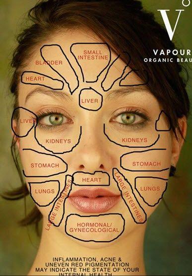 Mapa básico de reflexología de la cara
