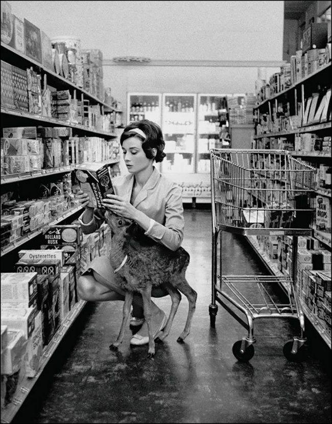 Audrey Hepburn de compras con su cervatillo, Beverly Hills, 1958