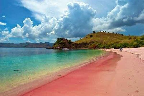 Pink Beach (Tangsi), Komodo National Park, Indonesia. Via sevenholidayspot.com This coral-pink beach is hard to get to: there are no roads nearby and you have to trek through a National Park filled with dinosaur like Komodo dragons to reach it. However, people who survive the trip usually feel that it's well worth the effort thanks to the beach's unique and striking colour.