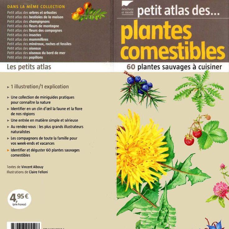 Petit-atlas-des-plantes-comestibles-pdf | Pearltrees