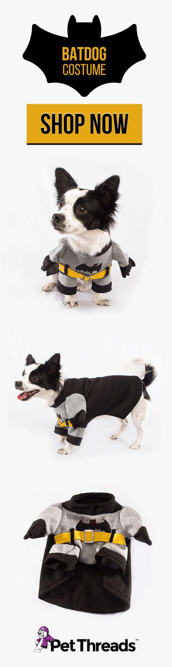 Turn your Dog into a superhero with The Batman Dog Costume by Pet Threads! Boasting a design that features a flowing cape, yellow belt and bat symbol, the costume is a novelty way of keeping your Dog warm. The Batman Dog Costume also has a drawstring collar for secure wear.  #batdog #batman #dogs #dogcostumes #dogoutfits