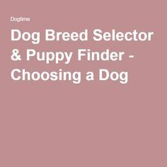 Dog Breed Selector & Puppy Finder - Choosing a Dog