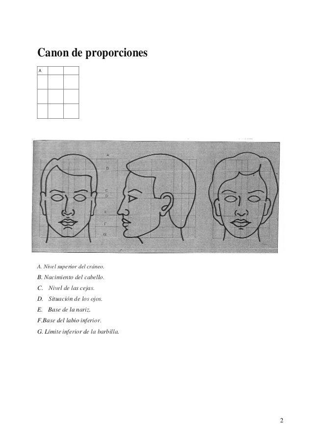 34 best anatomia images on Pinterest | Técnicas de dibujo, Cuadernos ...