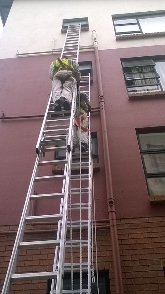 Our TMK Team Painting The Building of Our Client Straletzia