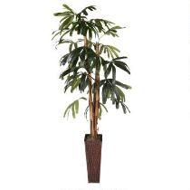 6' Rhapis Palm Artificial Potted Tree