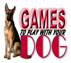 Games To Play With Your Dog...How to keep your dog mentally stimulated.