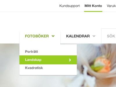 Navigation menu dropDown | Bold Drop-Down Navigation Design for Website Layouts / Design Tickle