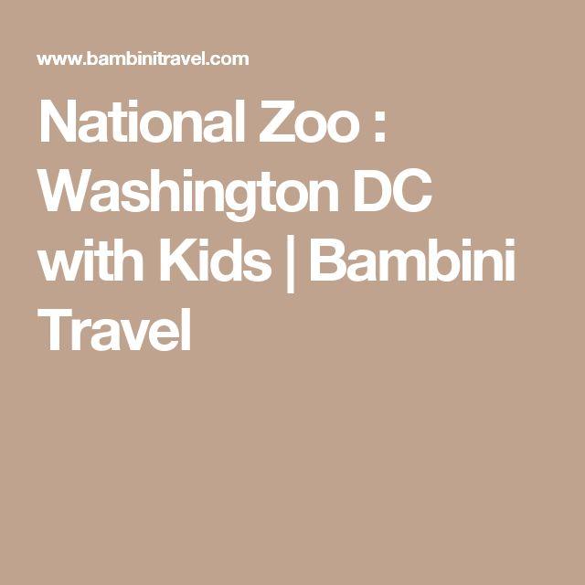 National Zoo : Washington DC with Kids   Bambini Travel