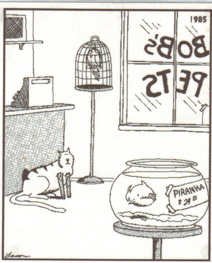 Image result for far side comics