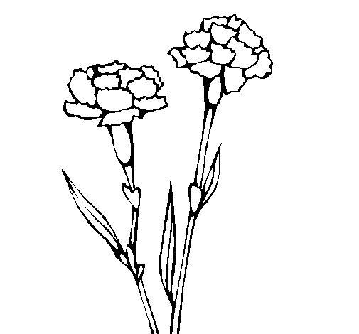 38 best siluetas flores images on Pinterest | Drawing flowers ...