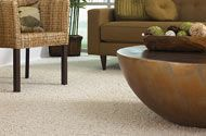 """Smartstrand carpet. There are some carpets in a """"Smartstrand"""" line that would be worth looking at.  They are made by Mohawk. They don't hold stains like most others do. They are made with """"Triexta"""" fiber. Not nylon, not polyester.  It wears well (is """"green"""") and good for kids, etc. Carpet ranges in price."""