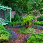 5 New Inexpensive Backyard Landscaping