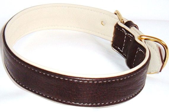 why not treat the pooch with this lovely brown on cream leather dog collar with brass hard ware  by http://www.etsy.com/uk/shop/newforestcrafts