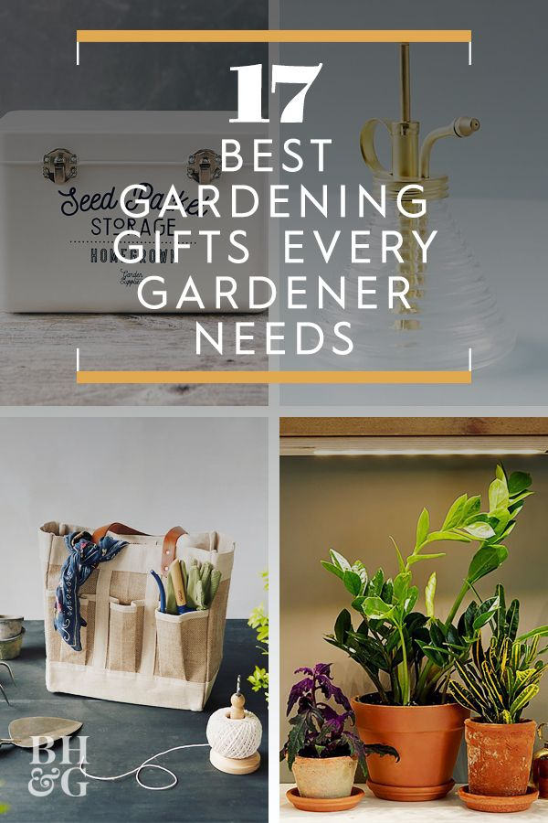 17 Best Gardening Gifts Every Plant Enthusiast Needs With Images