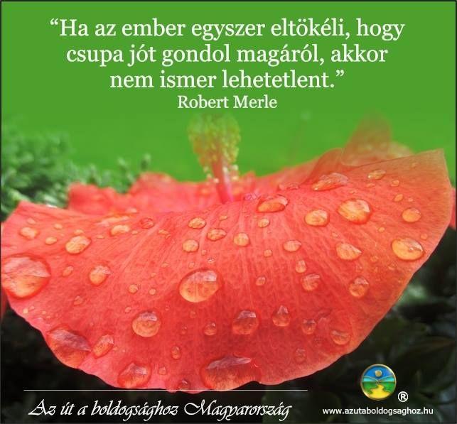 Robert Merle gondolata az eltökéltség erejéről. A kép forrása: Az Út a Boldogsághoz Magyarország # Facebook