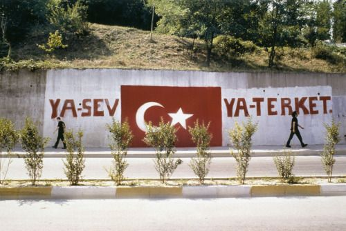 Halil Altındere, Love it or Leave it, 2005