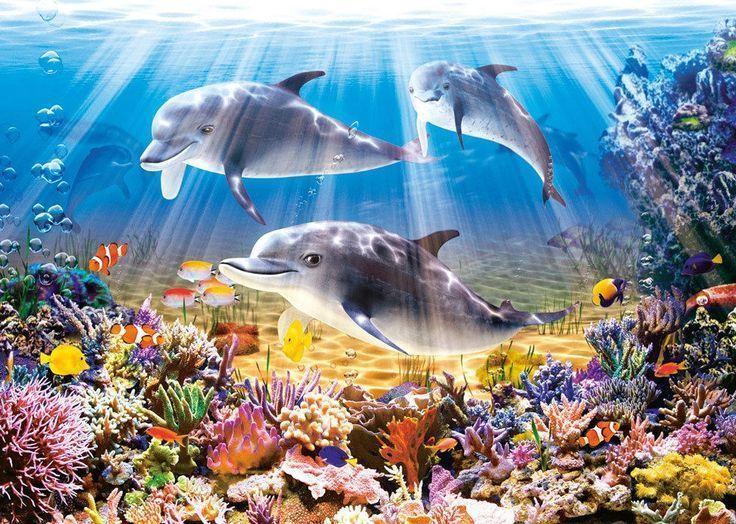 Castorland Puzzle 500 Teile Delphine Unter Wasser B 51014 Delfin In Spielzeug B51014 Castorland Delfin Delph Bemalte Kreuze Diamantmalerei Delphine