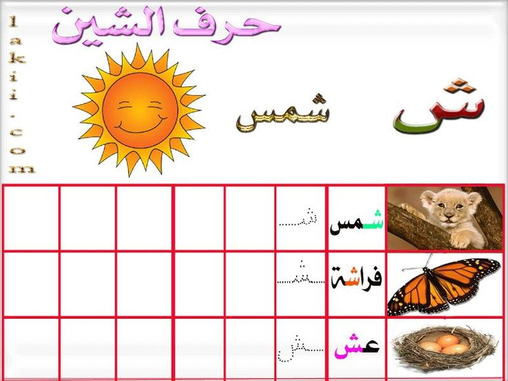 free download grammar books korean beginners pdf with arabic